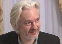 Создатель сайта WikiLeaks Джулиан Ассанж готов сдаться властям США в обмен на то, что его информатора Челси Мэннинг помилуют