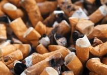 Группа исследователей, представляющих Гарвардскую школу медицины, выяснила, что курение в значительной степени влияет на структуру ДНК человека