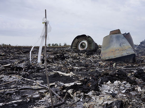 Доклад о катастрофе «Боинга» над Донбассом: Минобороны готовит козыри