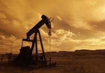 Нефти и газа в России хватит всего на 12 лет