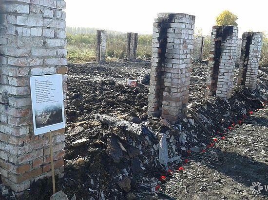 Причиной пожара в кемеровском приюте «Верный» стал поджог