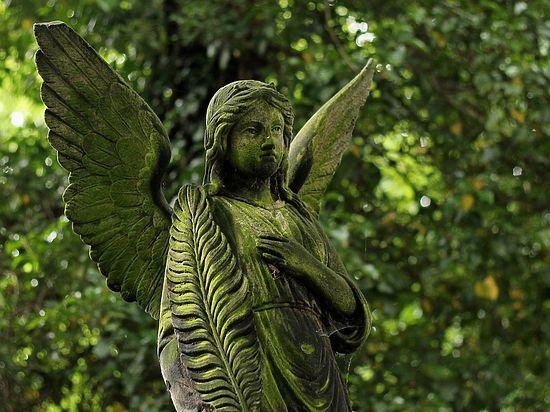 Ученый заявил, что после смерти люди воскресают в параллельных мирах