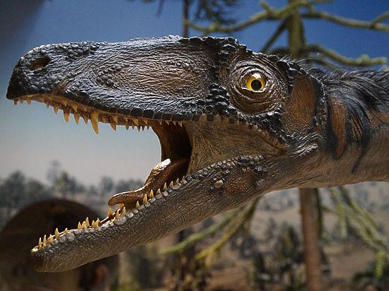 Ученый из США установил, какие поразительные звуки издавали динозавры
