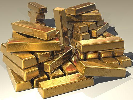 Амурчанину, нашедшему золото на 2,4 миллиона рублей, грозит тюрьма