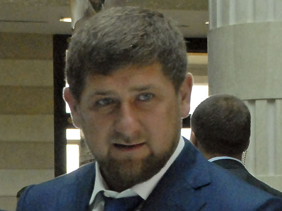 Пользователи соцсетей попросили Кадырова помочь наказать двух живодерок из Хабаровска
