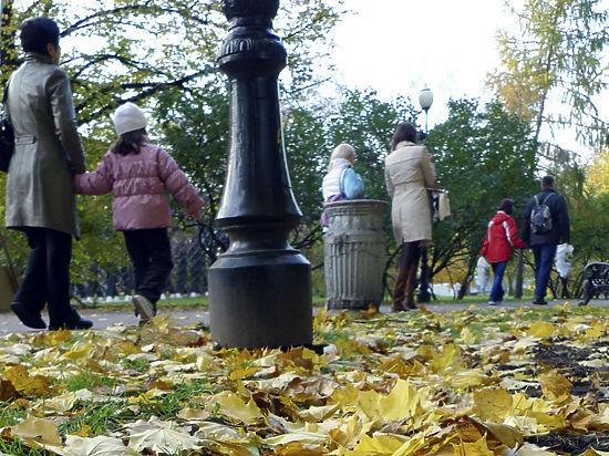 Биологи объяснили отсутствие листопада в Москве