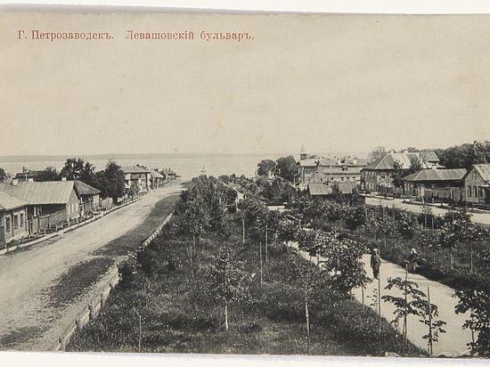 Какие деревья сажали в Петрозаводске на разных этапах его истории. Часть первая