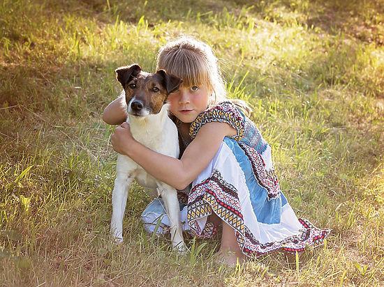 Названы породы собак, идеально подходящие для детей