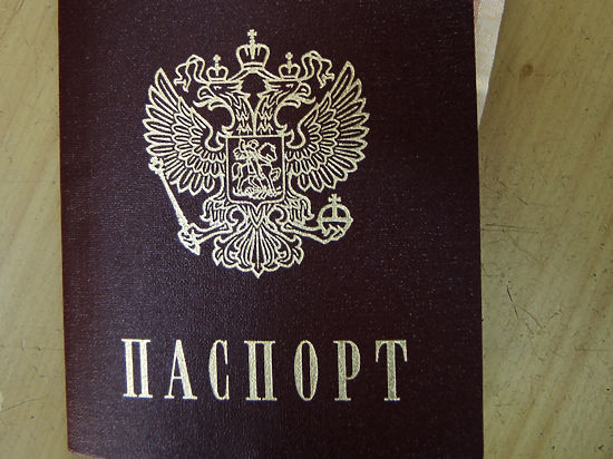 В Госдуме предложили массово раздавать на Донбассе российские паспорта