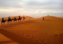 Многие люди, которых попросили бы сказать, с чем у них ассоциируется пустыня Сахара, назвали бы слово «жара» одним из первых