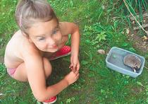За два часа до трагедии Дмитрий поймал дочери бабочку и попросил ее отпустить