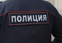 Отбиваться от разбойников пришлось в своем доме главе городского поселения Богородское Сергиево-Посадского района Подмосковья