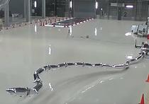 Группа специалистов, представляющих Токийский технологический института разработала робота, состоящего из своего рода «воздушных шаров», наполняемых гелием, тонких пневматических искуственных мышц и видеокамеры