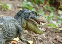 Группа исследователей под руководством Джеймса Кларка (James Clarke) из университета Джорджа Вашингтона в Вашингтоне пришла к выводу, что детеныши некоторых видов динозавров рождались со своего рода «молочными зубами», которые впоследствии выпадали