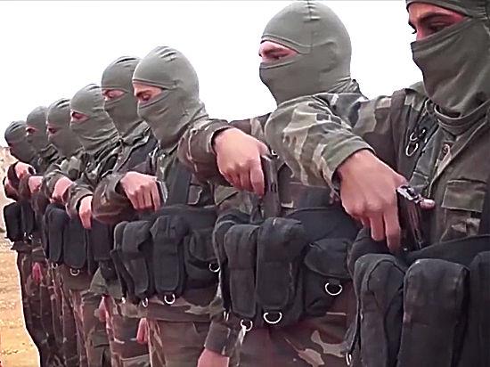 Экстремисты призвали посеять волну разрушений в Турции