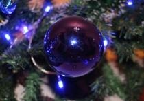 Новогодние праздники почти для всех представляют собой не только время подарков и поздравлений, но и период стрессов и повышенного нервного напряжения, а также, зачастую, переедания
