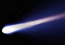 Американское аэрокосмическое агентство NASA сообщило о двух недавно обнаруженных космических объектах в Солнечной системе