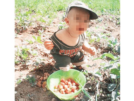 Отец похищенного два года назад мальчика: «Какой еще сын нашелся?!»