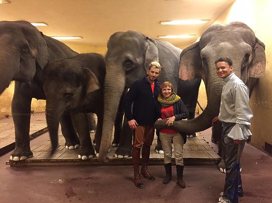 Тяжелый секс девушек с слонами