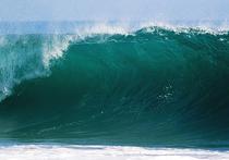Группа исследователей, представляющих Великобританию и Ирландию, пришли к выводу, что уже в ближайшие столетия уровень Мирового океана может стать значительно выше – по геологическим меркам это весьма скоро