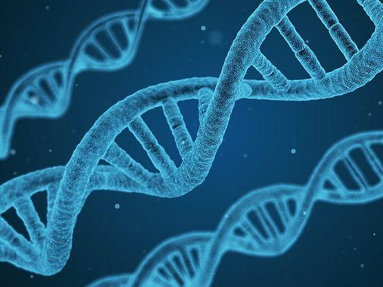 Для этого ученые предлагают проводить трансплантацию фекальных бактерий