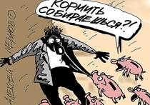 Ким Гармаев не смог противостоять «магии» денег и сразу после избрания председателем дачного некоммерческого товарищества «Гурульба» капитулировал перед их дурным влиянием