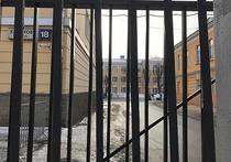 Как спастись от собак-убийц: эксперты комментируют трагедию в Москве