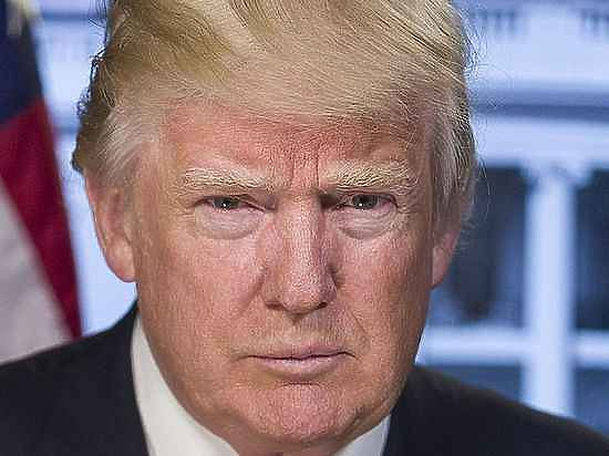 Сын Маккейна удалил твит с критикой слов Трампа о России