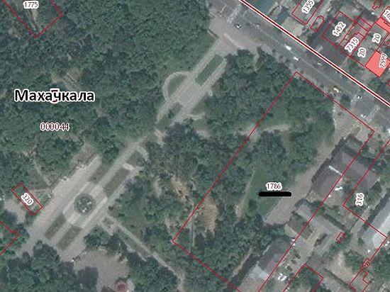 Многие жители Махачкалы выступили против уничтожения 60 вековых деревьев и нового строительства в центральном парке города