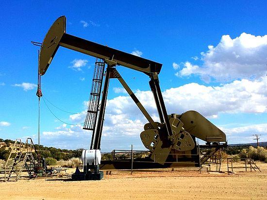 РФ последовательно сокращает поставки нефти соседу, требуя оплаты за газ без скидки