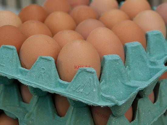 «Не превращайте яйцо в политическую проблему!»