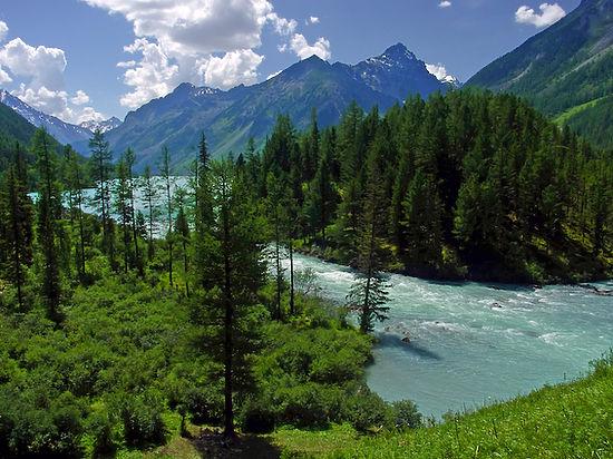 В Алтайском крае открыли Год экологии