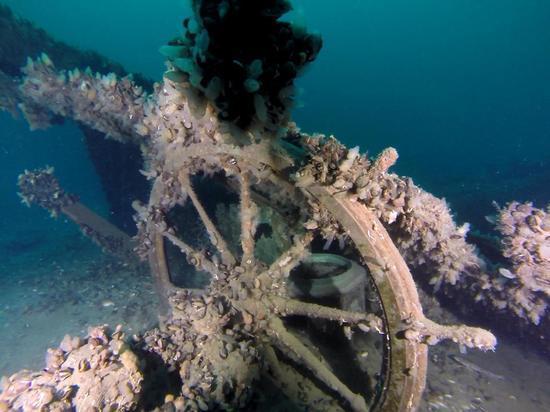 Обнаружение «Весты» у берегов Тарханкута – одно из самых значимых пока достижений Черноморского центра подводных исследований.