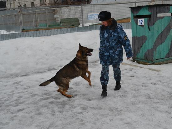 В колониях Татарстана служат не только немецкие овчарки