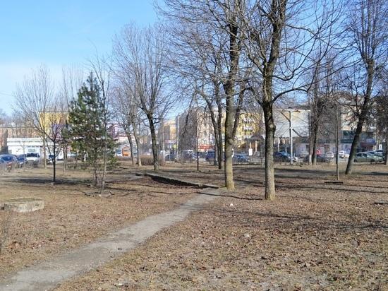 Глава Смоленска сообщил жителям города, что вынужден выдать документы на застройку участка возле «Гамаюна»