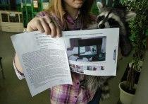 Один из старейших контактных зоопарков столицы вступил в судебную тяжбу со студией видеорекламы, которая использовала его енота в рекламном ролике с обнаженной девушкой