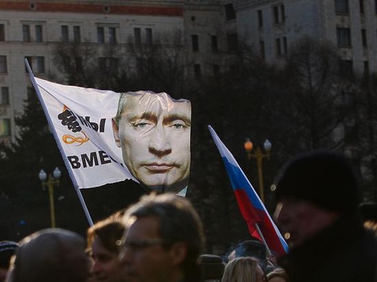 Лизнуть еще глубже и снизу: поклонники Путина создают новую организацию