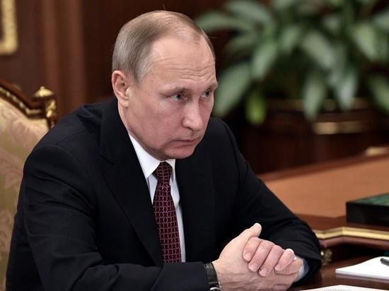 Путин обновил больше половины своей квоты в Общественной палате