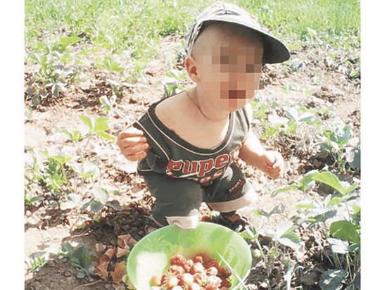 Нареченному отцу похищенного в Дедовске Матвея отказали в усыновлении