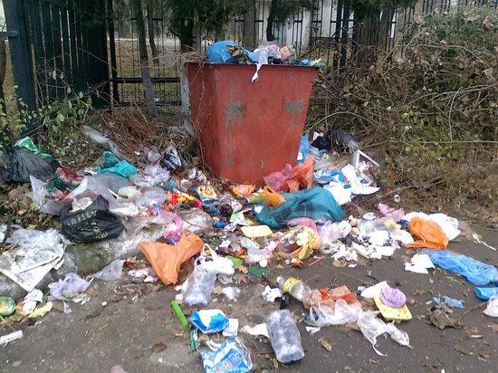 Город задолжал 900 миллионов мусороуборочной компании