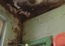 Обитатели бывшего воронежского общежития: «жить здесь опасно для здоровья»