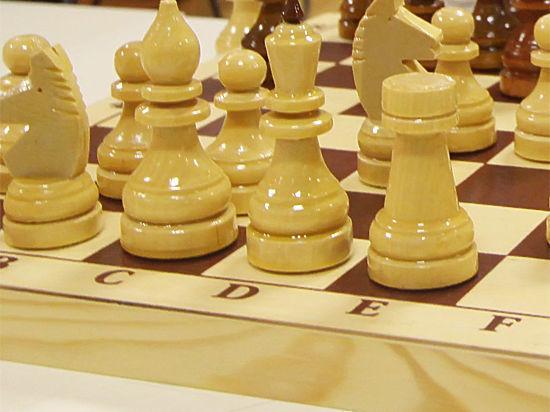 Exiterra Digital Agency развивает шахматы среди детей