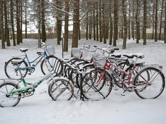 Настоящее весеннее тепло в Смоленскую область придет еще не скоро