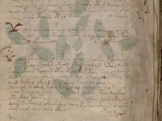 Российские математики нашли ключ к разгадке таинственного манускрипта Войнича