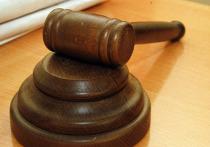 Об этом стало известно на заседании в Басманном суде, но рассмотрение дела отложили, так как потребовалась подготовка дополнительных документов