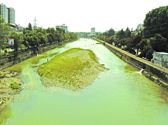 Одна река в Сочи почернела, другая стала оранжевой