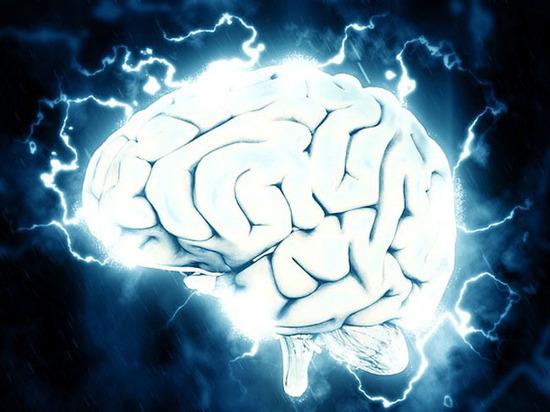 """Японцы сконструировали """"говорящий"""" сканер мозга"""