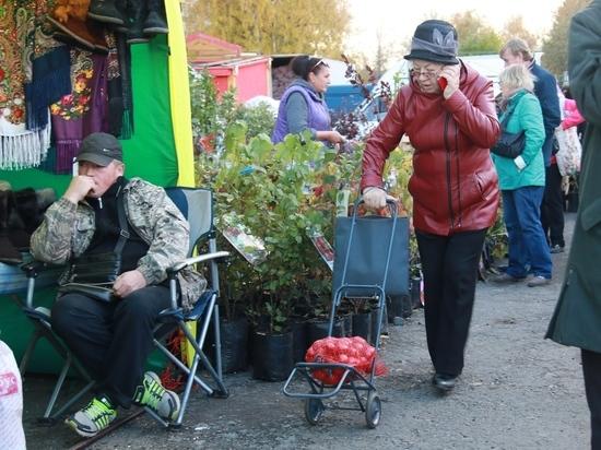 Карельским фермерам и дачникам разрешили продавать свою продукцию на улицах