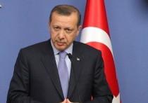Куда двинется Турция: Эрдоган между ЕС, Россией и Америкой