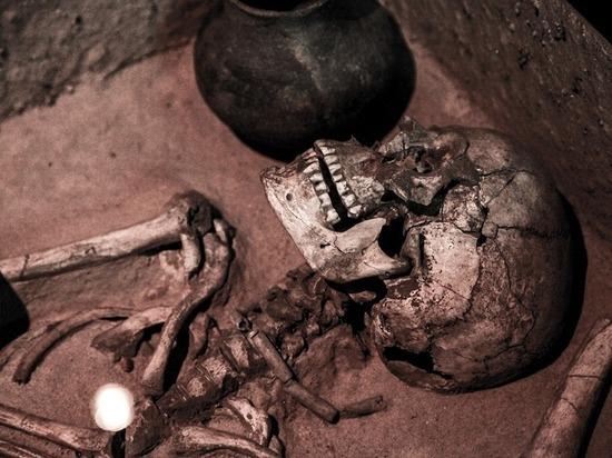 Ученые рассказали, чьи кости нашли на Сретенке